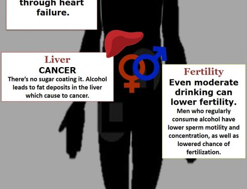 Alcohol's Effects on Your Body