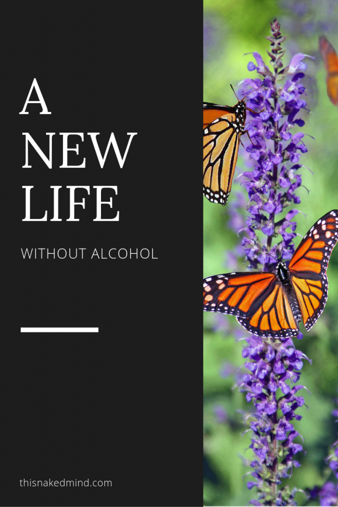 new life without alcohol