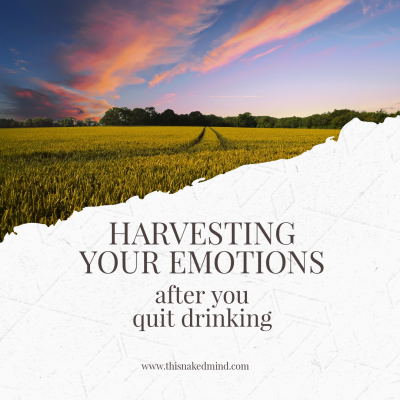 harvesting your emotions