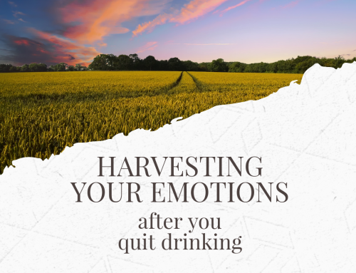 Harvesting Your Emotions After Quitting Drinking